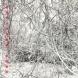 CDアルバム『空想から映像連鎖』(art direction:住井達夫 music:周防義和)/ 制作年:1998年