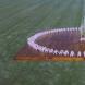 「牛のいる風景」1994年 400×400cm
