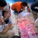 「おハながらート・プロジェクト-Greeting flower(Kashio elementary school)-」八尾スローアートショー2010 富山市樫尾小学校