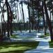 Garden of Pinewood   新潟青陵大学中庭(2010年10月完工)